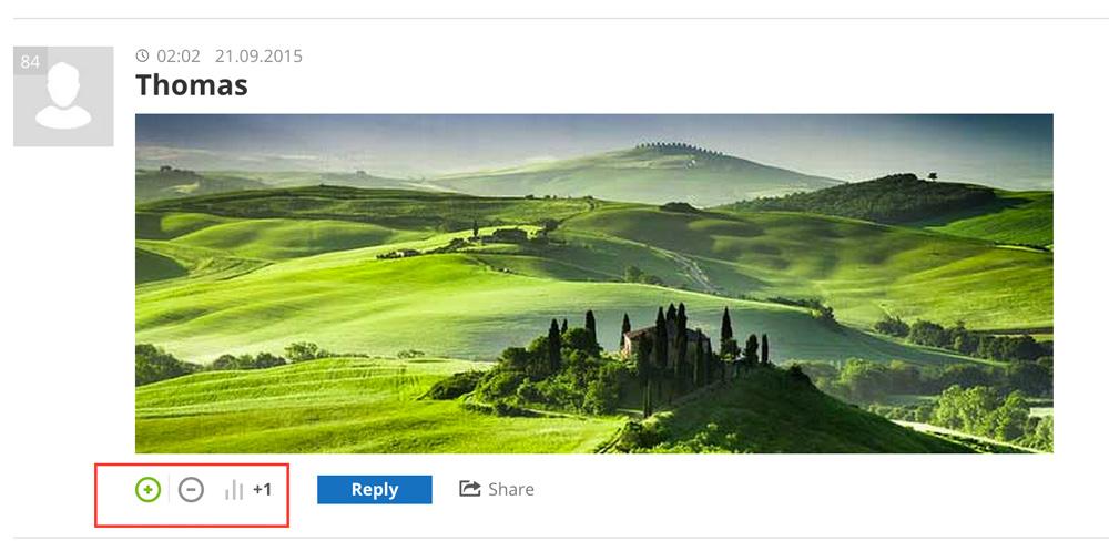 de:comments - Kommentare können mit Likes oder Dislikes versehen werden.