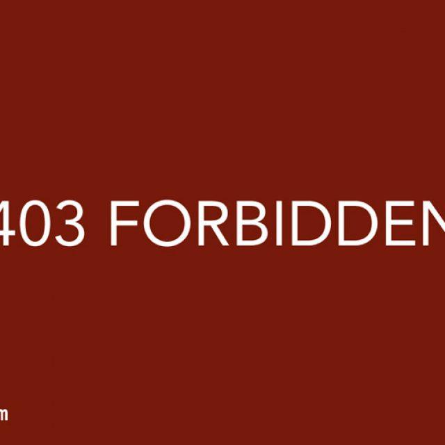 403-forbidden-fehler-loesen