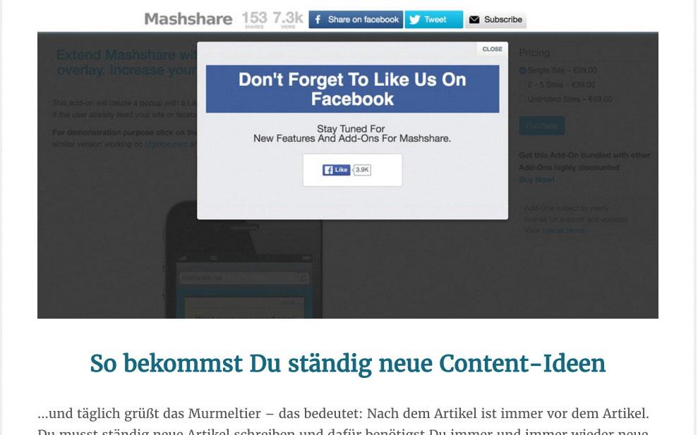 E-Book WordPress Sicherheit Screenshot
