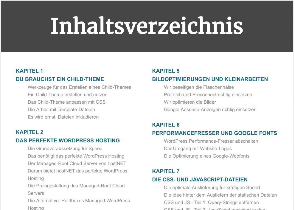 E-Book WordPress Highspeed Websites Screenshot