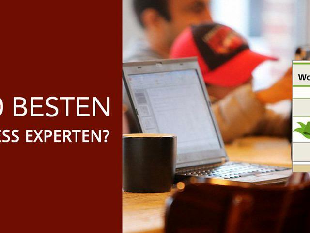 Die 10 besten WordPress Experten Deutschlands?